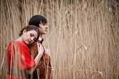 foto of bulrushes  - Young Beautiful embrace Couple In The Bulrush - JPG
