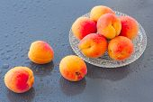 picture of wet  - wet apricots on a plate on the wet background - JPG