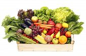image of escarole  - Box with fruits and vegetables isolated on white - JPG