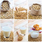image of soy bean  - Soymilk and soy beans collage  - JPG