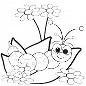 image of grub  - Kids illustration with grub on leaves with flowers  - JPG
