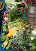 stock photo of farmers market vegetables  - Fresh food at a stall at the Port Townsend farmets market - JPG