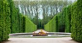 stock photo of garden sculpture  - Versailles Garden - JPG