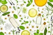 Fresh herbs,fruits and essential oil on white background poster