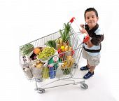 Cute boy with shopping cart full of grocery isolated on white background - a series of SHOPPING TROL