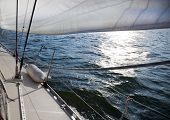 pic of sail-boats  - Sailing into the wind  - JPG