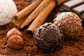 stock photo of cobnuts  - Chocolate Truffles - JPG