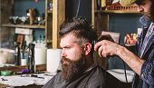 Hipster Client Getting Haircut. Haircut Concept. Barber Styling Hair Of Bearded Client With Comb And poster