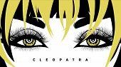 Vector Eye Lashes And Hair. Hand-drawn Woman S Sexy Luxurious Eye With Perfectly Shaped Eyebrows And poster