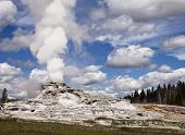 Geyser In Yellowstone Park