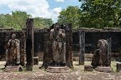 image of polonnaruwa  - Statues in ancient temple Polonnaruwa Sri Lanka - JPG