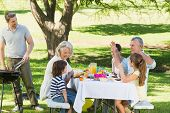 picture of extend  - Father at barbecue grill with extended family having lunch in the park - JPG