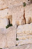 The Wailing Wall, Western wall , Jerusalem, Israel