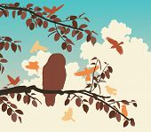 image of songbird  - Illustration of songbirds mobbing an owl on a branch - JPG