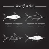 foto of swordfish  - SWORDFISH meat cuts scheme  - JPG