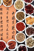 Chinese herbal medicine selection with mandarin calligraphy script. Translation describes the functi