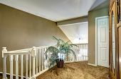 image of upstairs  - Olive tone upstairs deck with white balustrade and green palm in wicker pot - JPG
