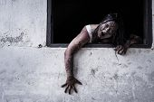 stock photo of terrific  - The scary Zombie Girl In Haunted House - JPG