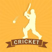 image of cricket shots  - Cricket batsman is ready to hit shot on yellow rays background - JPG