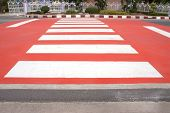 image of zebra crossing  - white zebra crossing with red painted on asphalt street - JPG
