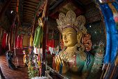 image of tibetan  - sculpture of Maitreya buddha at Thiksey Monastery - JPG