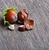 picture of hazelnut  - Forest nuts hazelnuts on wooden background - JPG