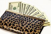 image of one hundred dollar bill  - change purse with one hundred dollar bills - JPG
