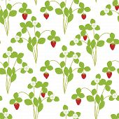 stock photo of strawberry plant  - Strawberry plant with flowers and berries seamless pattern - JPG