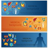 image of internal organs  - Concept of web banner - JPG