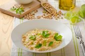 picture of chickpea  - Chickpeas with paprika cream sauce sprinkled with herbs organic chickpeas - JPG