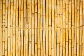 foto of bamboo  - Close up bamboo wall  - JPG