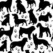 stock photo of sheep-dog  - Dog seamless pattern - JPG