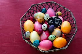 picture of chicken-wire  - Colorful chicken and quail Easter eggs - JPG