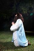 picture of gethsemane  - Side view of Jesus in Garden of Gethsemane on knees praying to God - JPG