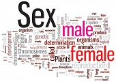 foto of porno  - Sex word cloud illustration - JPG