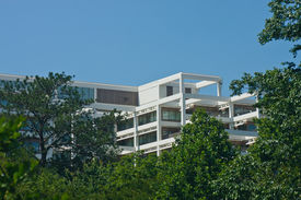 picture of commercial building  - A white terraced office tower rising out of green trees into a clear blue sky - JPG