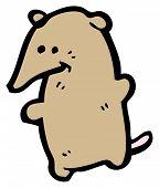 pic of shrew  - cartoon shrew - JPG