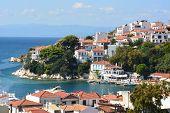 View Of Typical White Houses Of Skiathos Town In Skiathos Island, Aegean Sea, Greece. Skiathos Town  poster