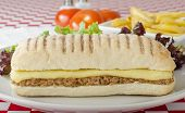 image of yellowfin tuna  - Tuna Melt - Cheese and tuna toasted panini served with salad and chips on a red and white gingham background.