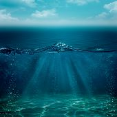 pic of under sea  - Under the blue skies - JPG