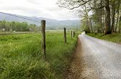 foto of cade  - Country road in Cades Cove Great Smoky Mountains National Park - JPG