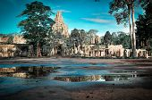 Giant Tree Covering Ta Prom And Angkor Wat Temple, Siem Reap, Cambodia