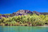 stock photo of dalyan  - Landscape of Dalyan river - JPG
