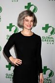 LOS ANGELES - FEB 26:  Alison Sudol at the Global Green USA Pre-Oscar Event at Avalon Hollywood on F