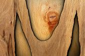 Interesting Abstract Wood