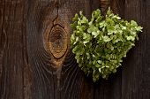 pic of broken heart flower  - green heart of flowers on a background of a wooden fence - JPG