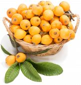 picture of loquat  - loquat fruits with leaves in wicker basket isolated on white - JPG