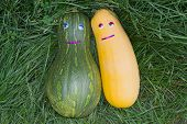 foto of oblong  - Two funny colorful oblong pumpkin with eyes lie on the grass - JPG
