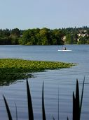 GreenLake In Summer poster
