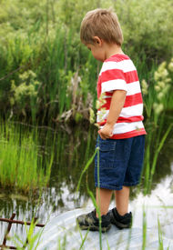 picture of tadpole  - A happy two year old boy sparks curiousity at a nearby culvert while searching for tadpoles frogs and fish - JPG